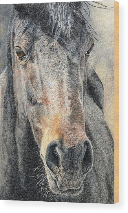 Horse Wood Print featuring the drawing High Desert by Joanne Stevens