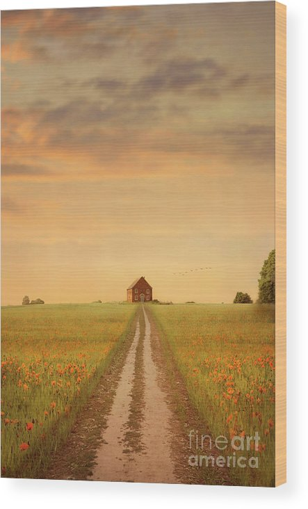 House Wood Print featuring the photograph House At The End Of A Track In A Poppy Field by Lee Avison