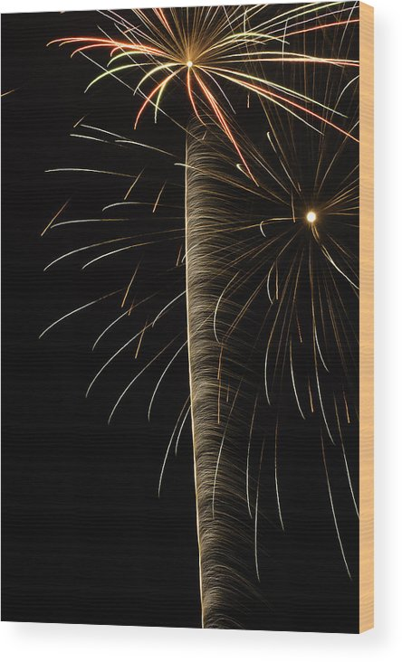 Wood Print featuring the photograph Independance IIi by Michael Nowotny