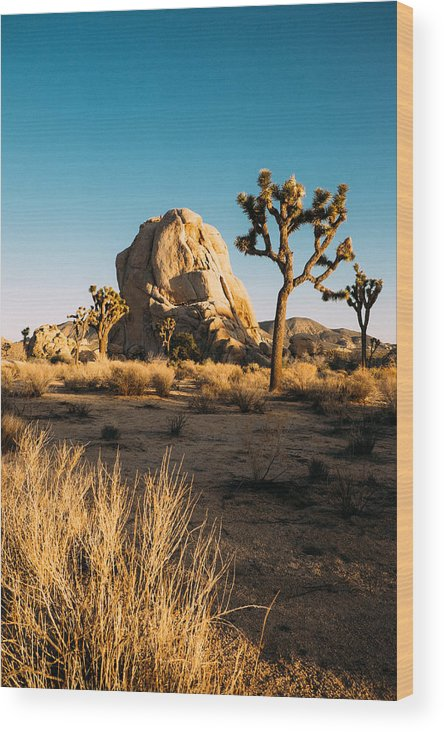 Joshua Tree Wood Print featuring the photograph Intersection Rock Joshua Tree National Park by Andrew Rich