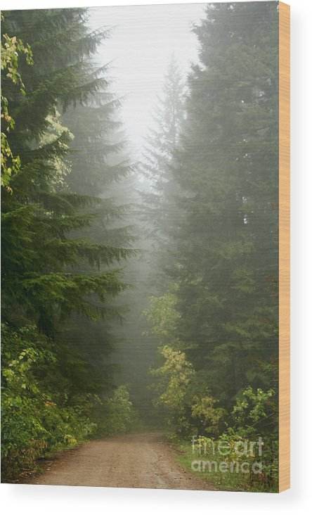 Forest Wood Print featuring the photograph Journey Through The Fog by Idaho Scenic Images Linda Lantzy