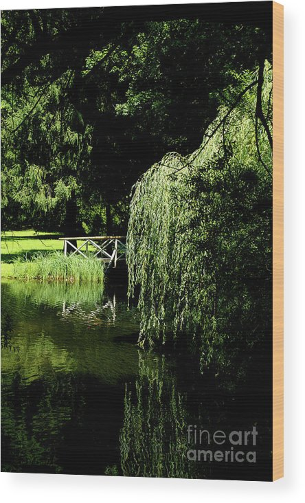 Lake Wood Print featuring the photograph Lake Mirror by Pit Hermann