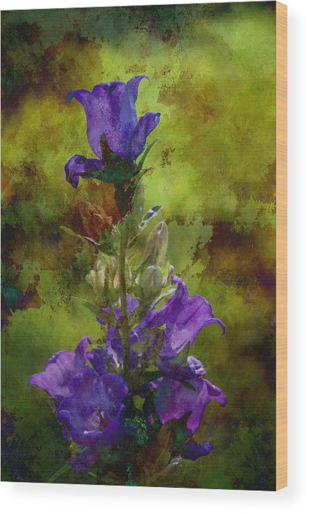 Flowers Wood Print featuring the photograph Let The Bells Ring by Peter Olsen