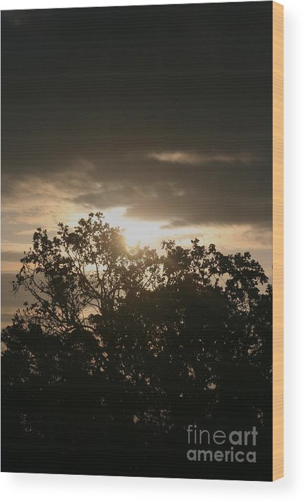 Light Wood Print featuring the photograph Light Chasing Away The Darkness by Nadine Rippelmeyer