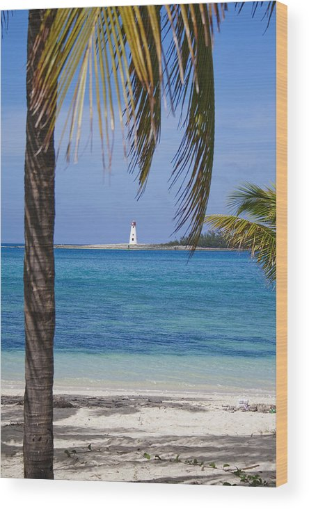 Lighthouse Wood Print featuring the photograph Lighthouse Under Palm by Joshua Francia
