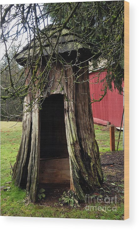 Clay Wood Print featuring the photograph Loggers Outhouse by Clayton Bruster