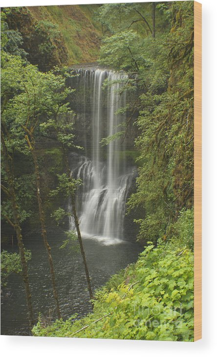 Silver Falls Wood Print featuring the photograph Lower South Falls by Idaho Scenic Images Linda Lantzy