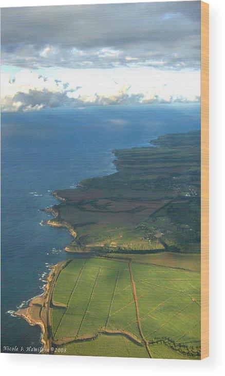 Maui Wood Print featuring the photograph Maui Coastline by Nicole I Hamilton