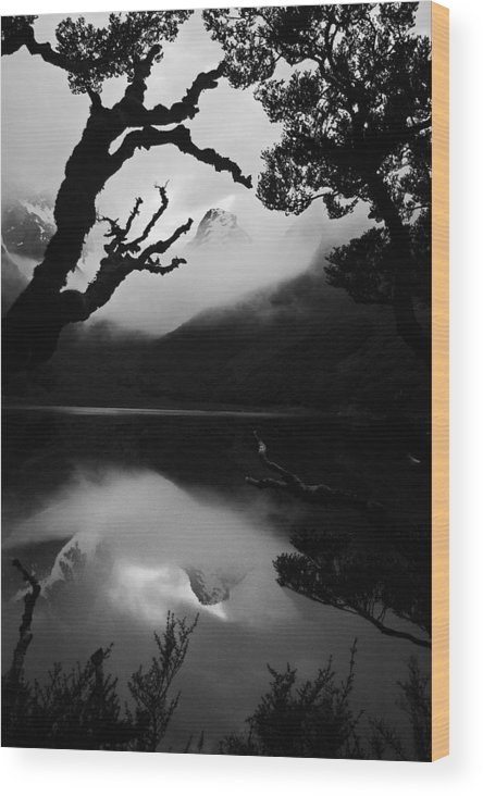 Landscape Wood Print featuring the photograph Mckenzie Reflection by Karl Manteuffel