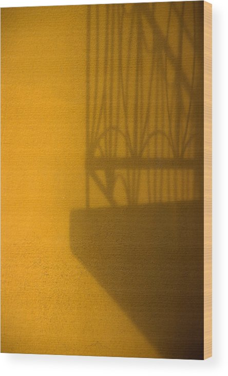 Montreal Wood Print featuring the photograph Montreal Shadow 1 by Art Ferrier
