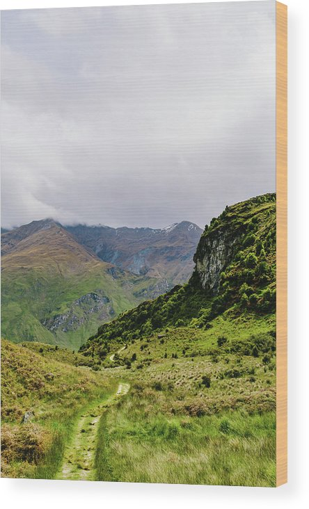 Path Wood Print featuring the photograph Mountain Path Vert by Chris Greig