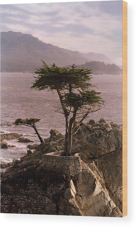 Ocean Wood Print featuring the photograph Ocean Haze by Brendon Bradley