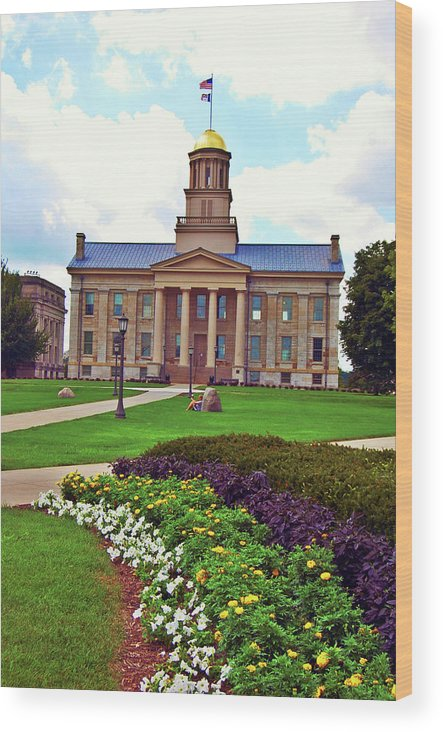 Dome Wood Print featuring the photograph Old Capitol by Jame Hayes