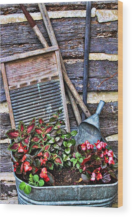 Creative Wood Print featuring the photograph Old Wash Tub With Plants by Linda Phelps