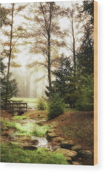 Autumn Wood Print featuring the photograph Over The River by Tom Mc Nemar