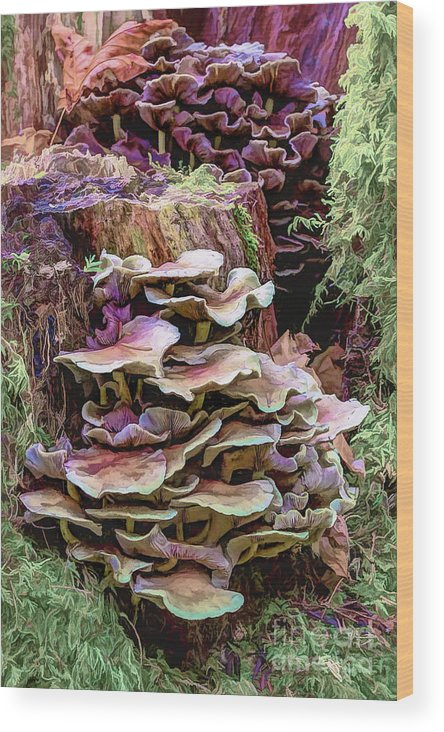 Mushroom Wood Print featuring the photograph Painted Mushrooms by Jean OKeeffe Macro Abundance Art