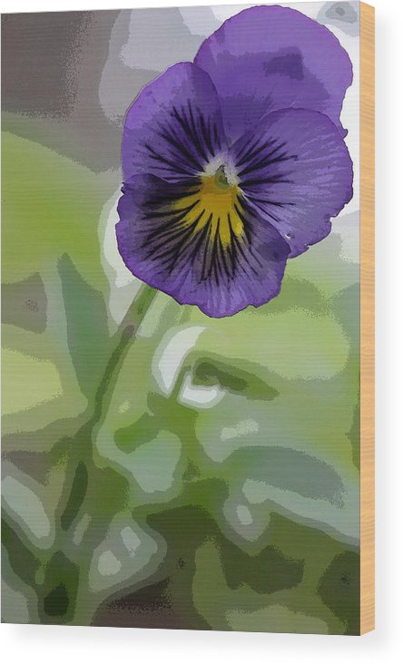 Summer Flower Wood Print featuring the photograph Pansy by David Bearden