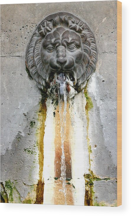 Wood Print featuring the photograph Paris - Waterfountain by Jennifer McDuffie