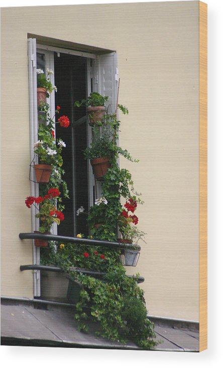 Wood Print featuring the photograph Paris - Window 2 by Jennifer McDuffie