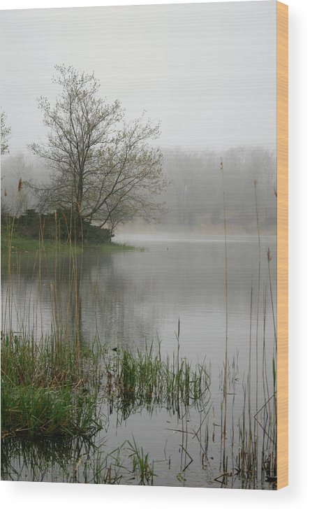 Landscape Wood Print featuring the photograph Peaceful by Erika Lesnjak-Wenzel