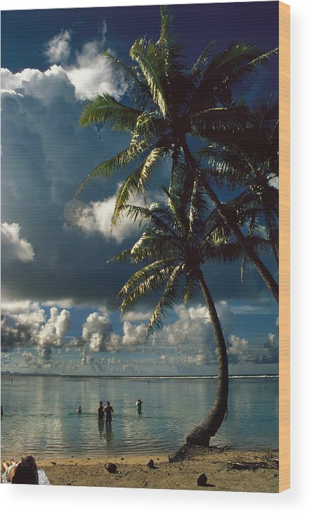 Island; Paradise; Beach; Palms; Palm; Palm Trees; Calm Water; Tropical; Swimmers; Vacation; Ideal; T Wood Print featuring the photograph Pigeon Point On Tobago by Carl Purcell