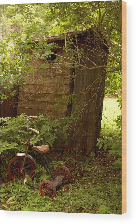Outhouses Wood Print featuring the photograph Pit Stop by Linda McRae