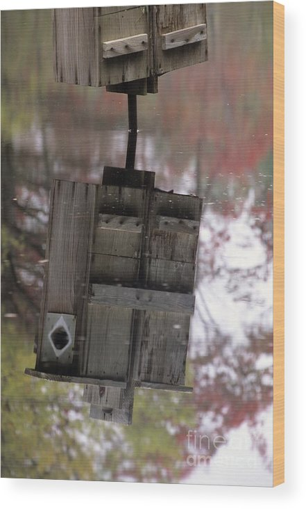 Wood Duck Wood Print featuring the photograph Reflection Of Wood Duck Box In Pond by Erin Paul Donovan