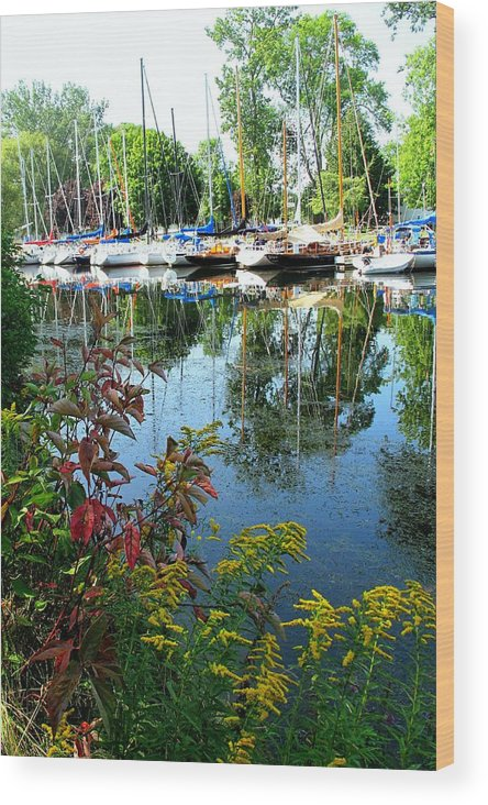 Flowers Wood Print featuring the photograph Reflections In The Pool by Ian MacDonald