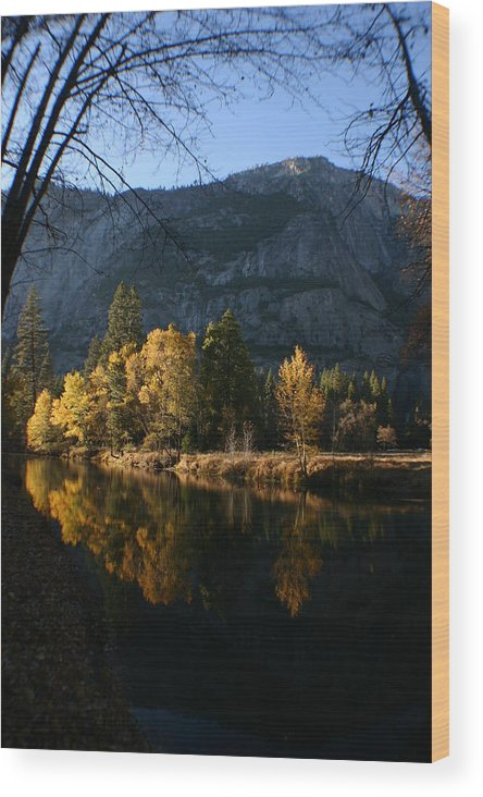 Yosemite Wood Print featuring the photograph Reflections by Travis Day