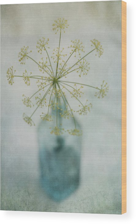 Dill Wood Print featuring the photograph Round Dance by Priska Wettstein