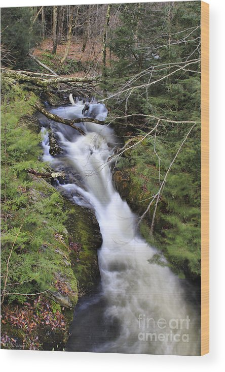 Rural Wood Print featuring the photograph Rushing Montgomery Brook by Deborah Benoit