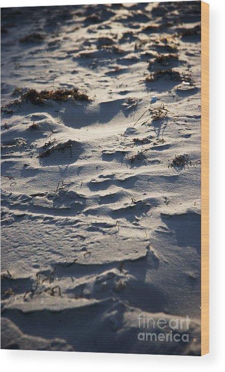 Sand Wood Print featuring the photograph Sand Beach by Hideaki Sakurai