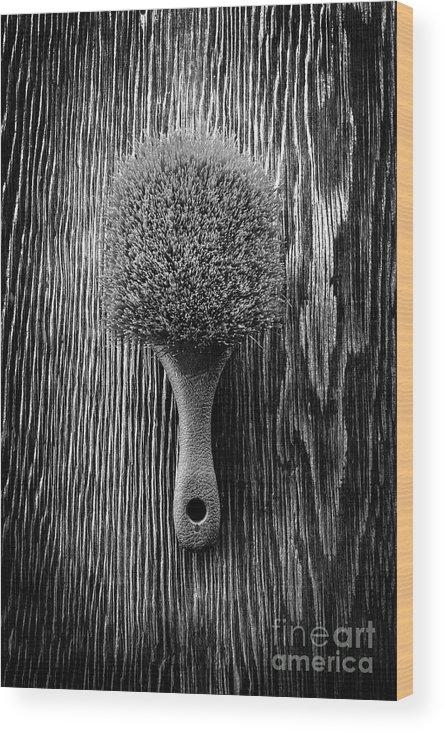 Art Wood Print featuring the photograph Scrub Brush Up Bw by YoPedro