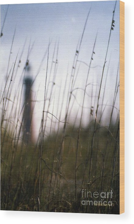 Dunes Wood Print featuring the photograph Sea Oats Dunes by Dodie Ulery