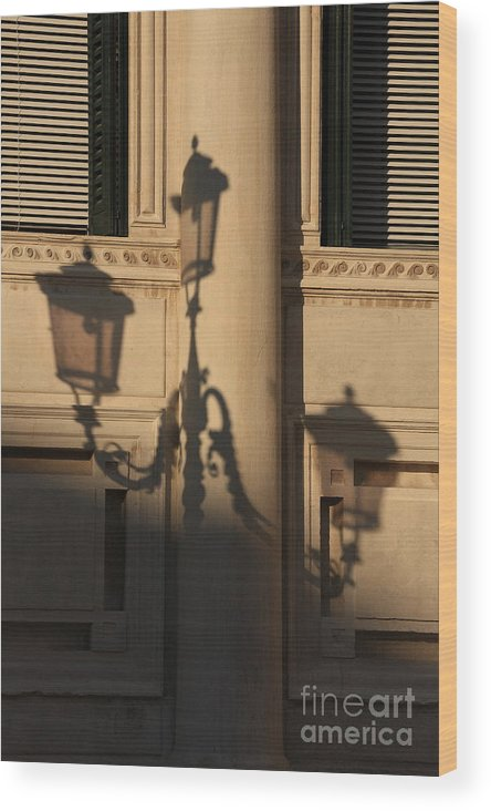 Venice Wood Print featuring the photograph Shadow Of A Lamp Post In Venice by Michael Henderson