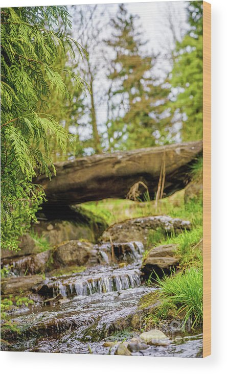 Waterfall Wood Print featuring the photograph Small Waterfall 2 by Viktor Birkus