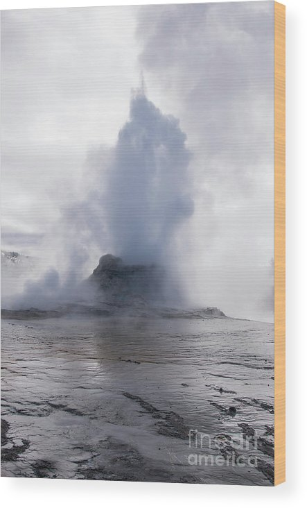 Yellowstone National Park Wood Print featuring the photograph Spewing by Bob Phillips