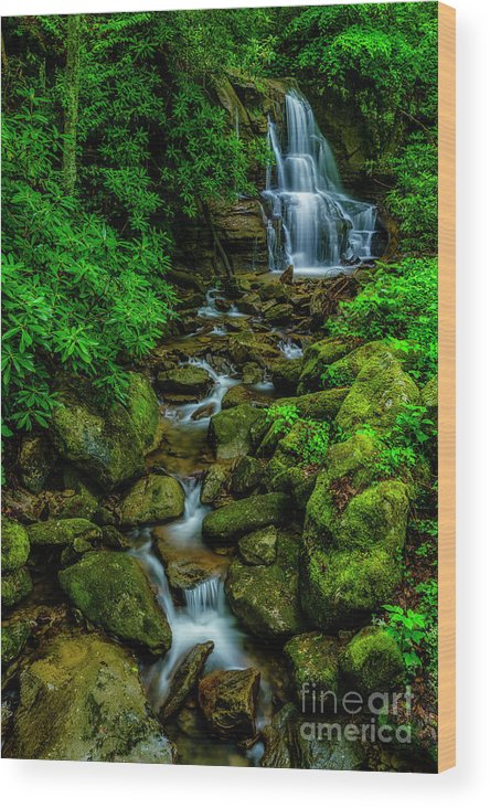 Spring Green Waterfall and Rhododendron by Thomas R Fletcher
