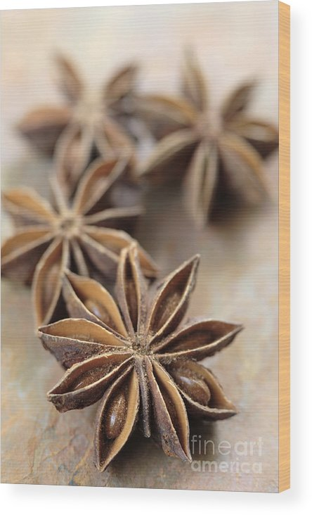Star Wood Print featuring the photograph Star Anise by Neil Overy