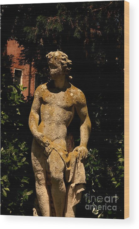 Venice Wood Print featuring the photograph Statue In The Garden In Venice by Michael Henderson