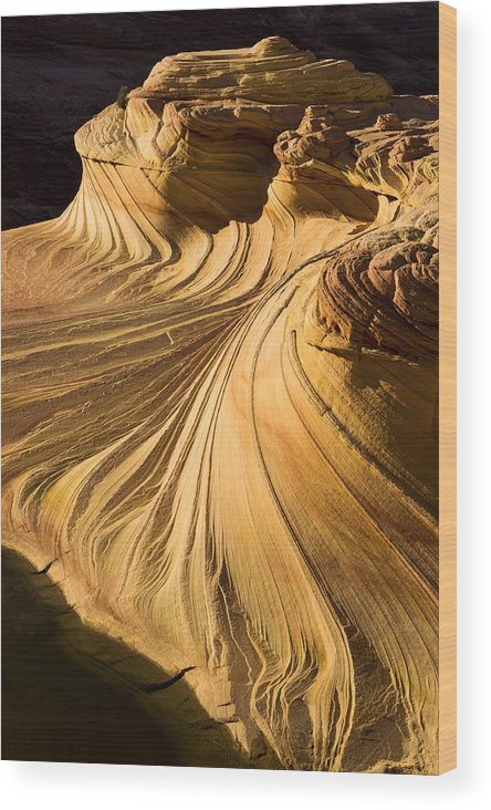 Summer Heat Wood Print featuring the photograph Summer Heat by Chad Dutson