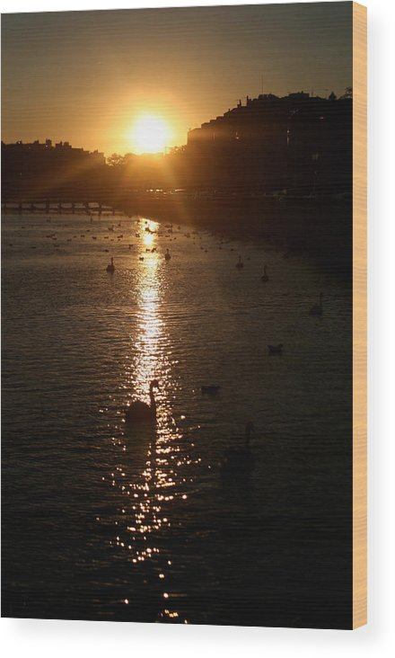 Sunset Wood Print featuring the photograph Sun Setting In Sheepshead Bay by Jason Hochman