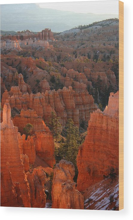 Bryce Canyon National Park Wood Print featuring the photograph Sunrise On The Hoodoos by Brian M Lumley
