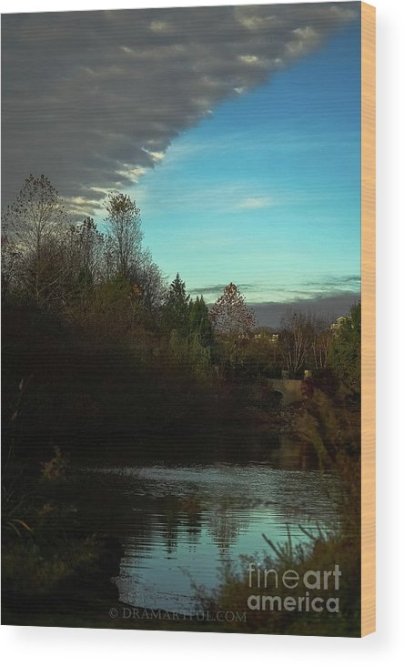 Outdoors Wood Print featuring the photograph Curtain Over The Pond by Maria Costello