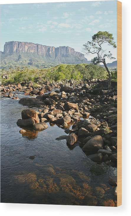 Landscape Wood Print featuring the photograph Tepui Formation by Ernesto Grossmann