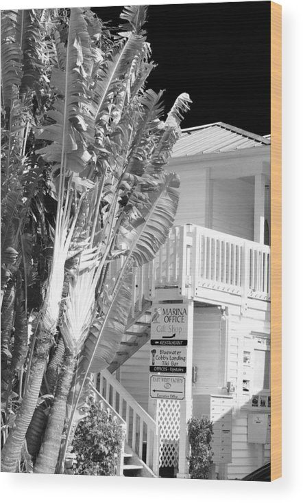 Office Wood Print featuring the photograph The Marina Office by Don Youngclaus
