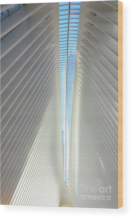 Oculus Wood Print featuring the photograph The Skylight Of The Oculus by Ava Reaves