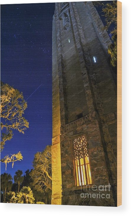 Landscape Wood Print featuring the photograph The Tower At Night by Kenny Brachle