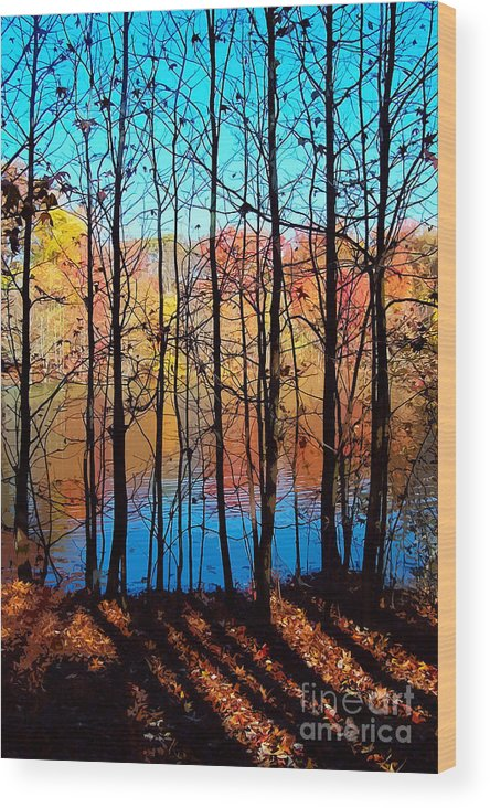 Autumn Wood Print featuring the photograph Thru Trees by Andrew Kazmierski