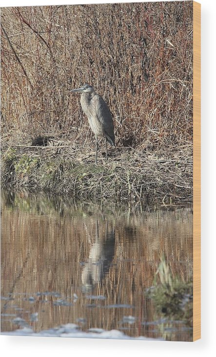 Hudson River Wood Print featuring the photograph Time To Reflect by Charles Van Wagenen Jr